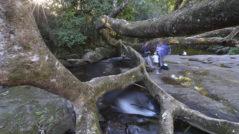 Cachoeira do Rio Grande